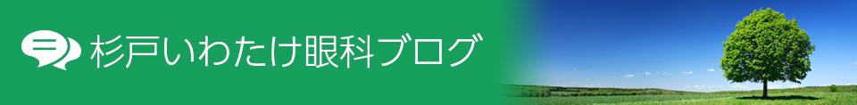 初詣(鷲宮神社)